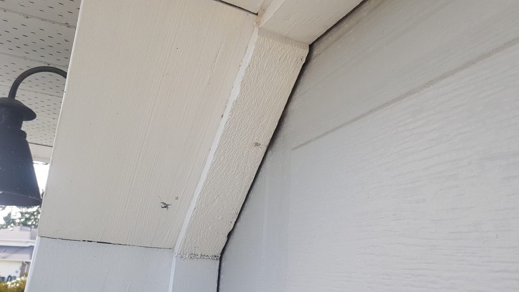 View of garage door that doesn't have weather stripping applied.